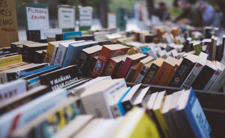 Vente de livres pour enfants au profit de l'association Centre Père Michel et de Noël solidaire